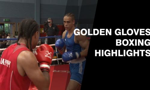 Golden Glove Boxing show image
