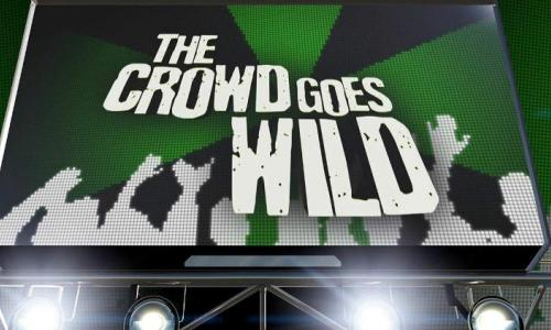 The Crowd Goes Wild show image